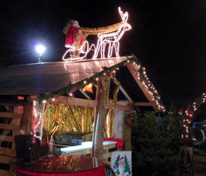 Tannen-Paradies Verkaufsbude Lichtenrade mit Rentier und Nikolaus auf Dach