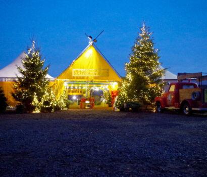 Tannen-Paradies Eingang Verkaufsplatz beleuchtet Abendstimmung