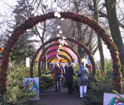 Tannen-Paradies Verkaufsplatz Trabrennbahn mit Tannenreisbogen